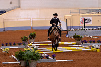 2014 AQHYA World Show